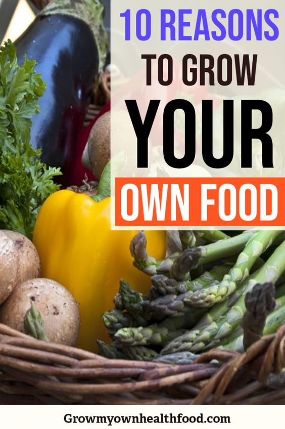 10 Reasons to Grow Your Own Food - Grow My Own Health Food