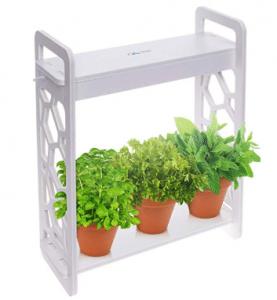 Mindful Design Hydroponic Herb Garden