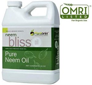Neem Oil - Natural Pesticide