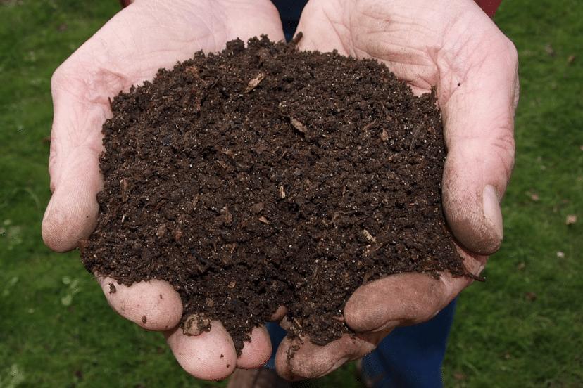 Organic Gardening Soil