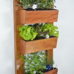 Grow your own food with a vertical garden