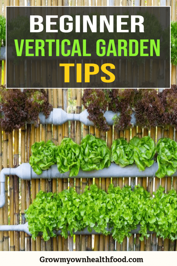 Vertical Gardens Guide