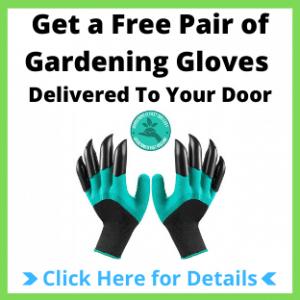 Free Gardening Gloves