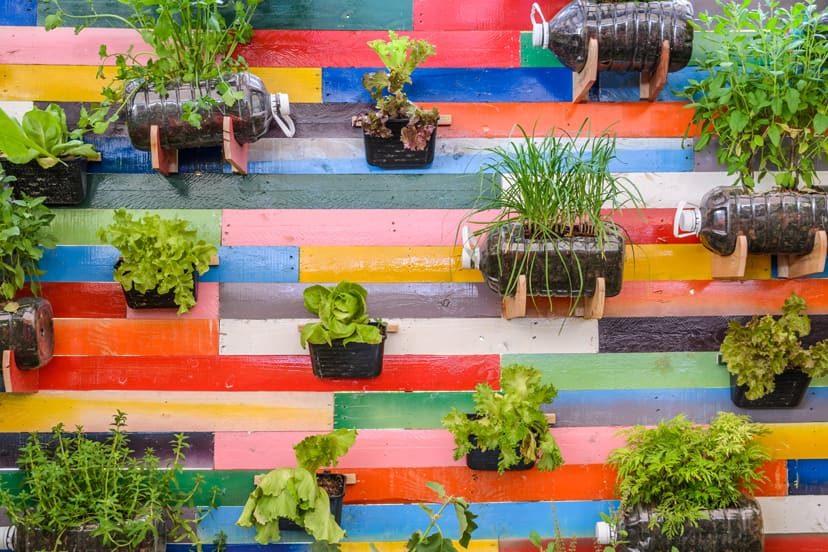 7 Cool Hanging Herb Garden Ideas & Tips To Grow Your Favorite Herbs Indoors