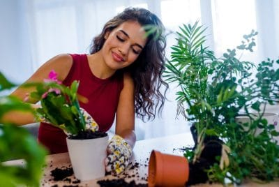 Everything You Need To Know About Indoor Tower Garden & Lighting