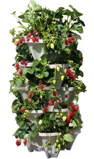 Mr. Stacky 5 Tiered Vertical Gardening Planter