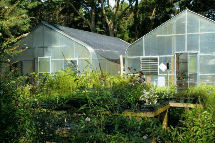 Survival Garden Guide