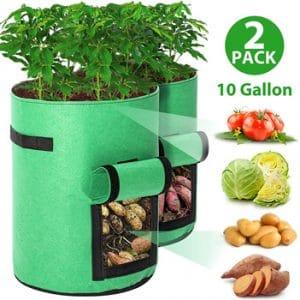 Tvird Potato Grow Bags