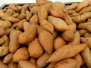 Sweat Potatoes - Survival Garden Best