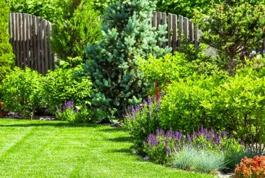 Backyard Garden Design Basics 9 Steps To A Better Backyard