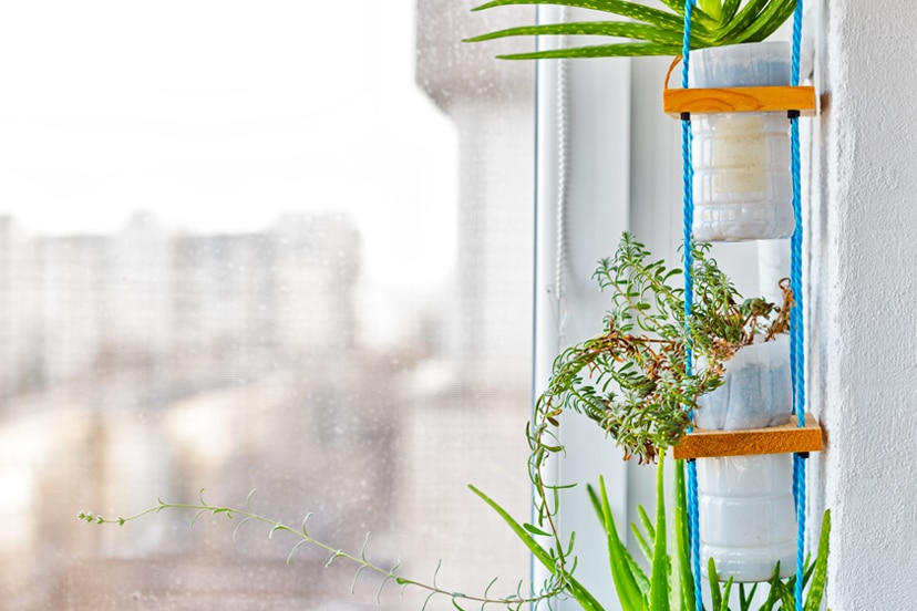 How To Build And Maintain An Indoor Vertical Garden For Medicinal Herbs