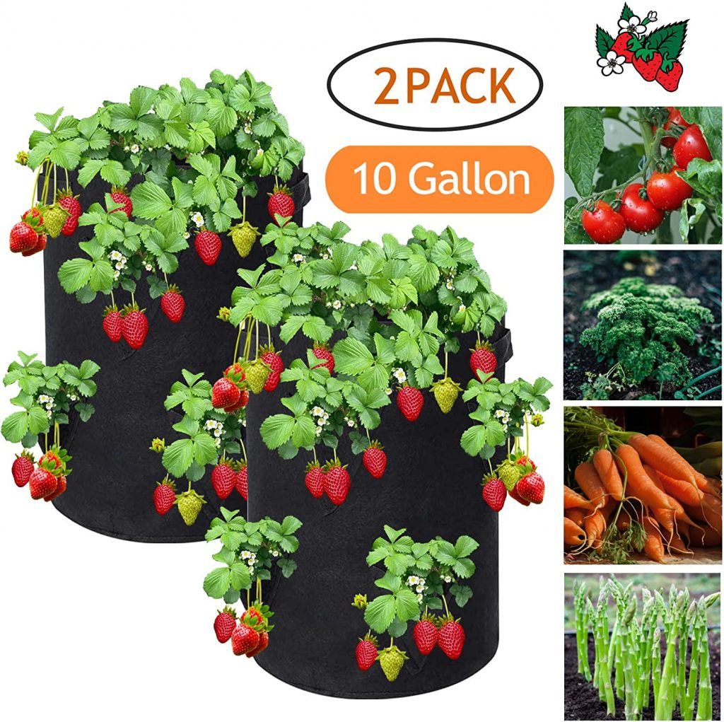 reeyox strawberry grow bag