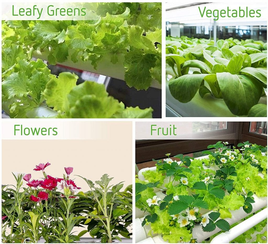 vivosun-hydroponic-grow-kit