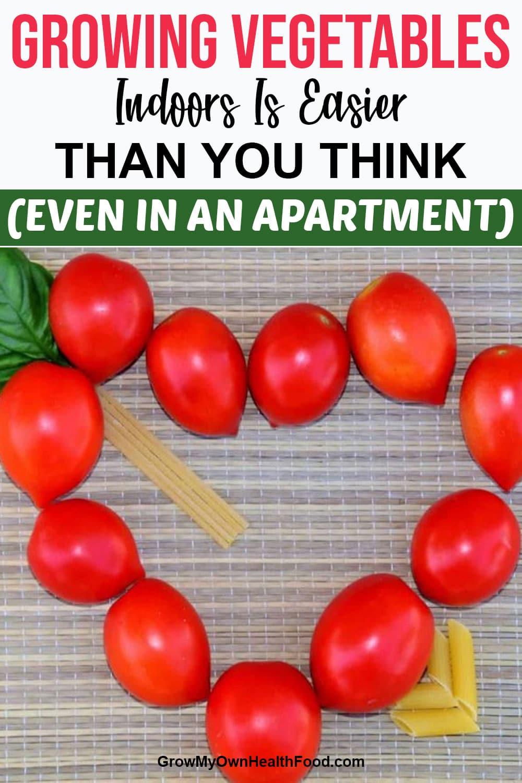 Growing Vegetables Easily
