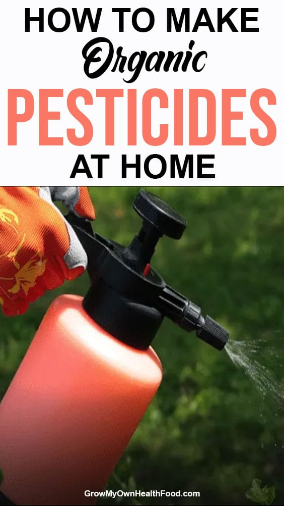 Make Organic Pesticides at Home