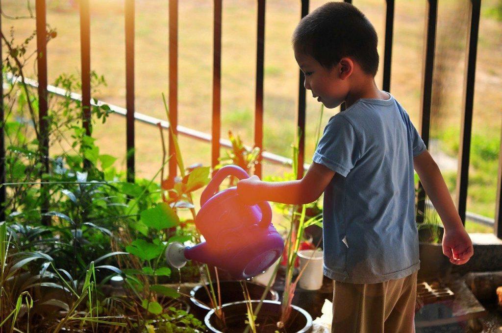 Gardening Safety Tips For Kids