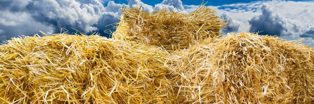 pile of straw bale