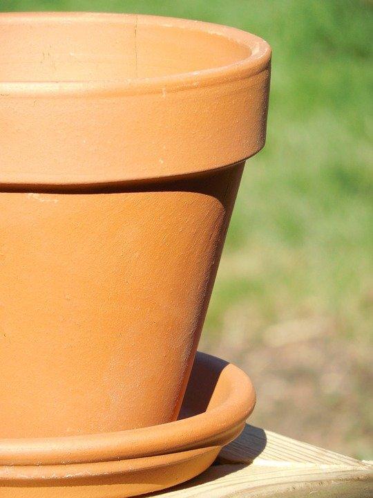gardening container