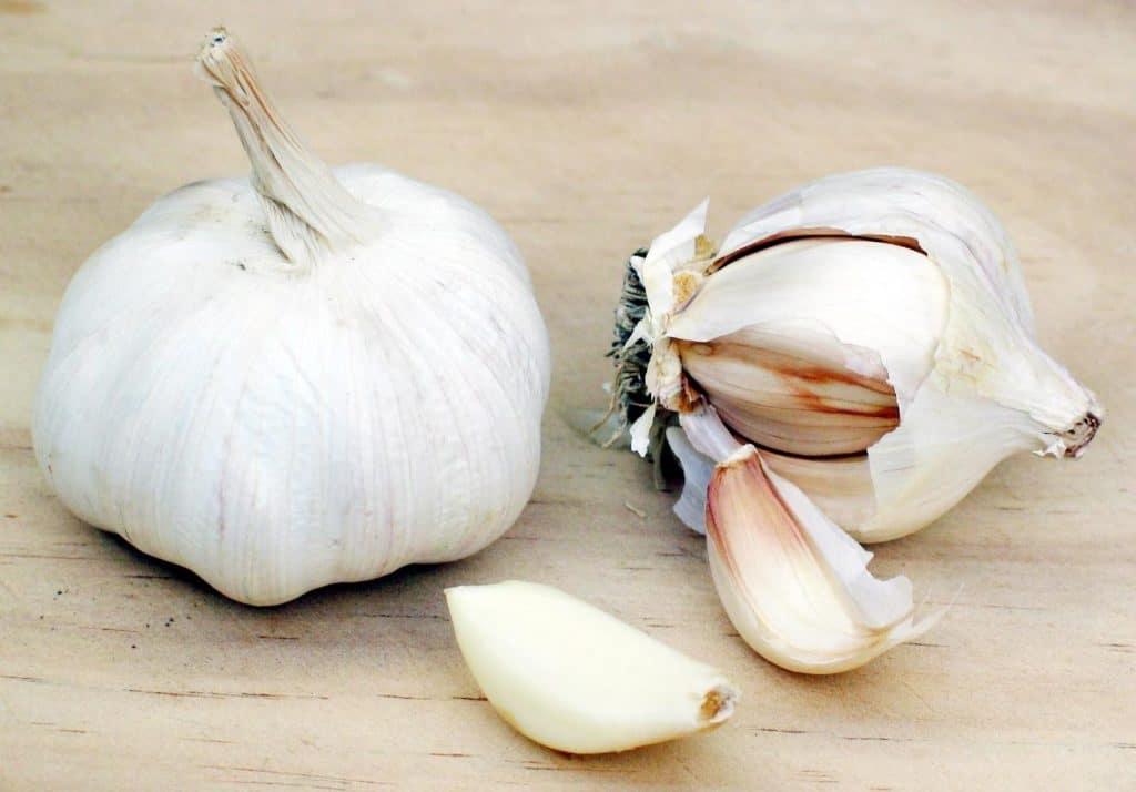 garlic bulb for growing garlic