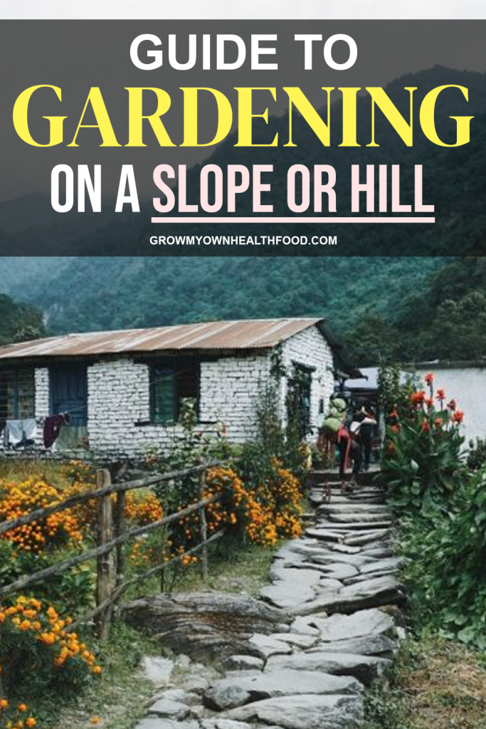 Guide to Gardening on A Slope or Hill