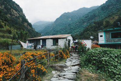 Garden On A Hill