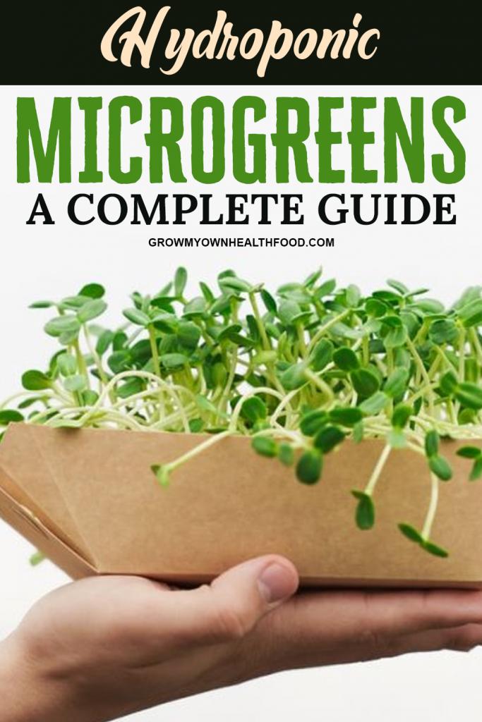 Hydroponic Microgreens