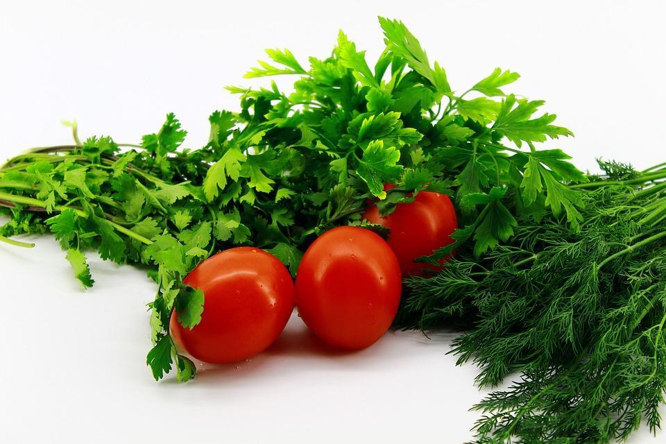 Cilantro with tomatoes
