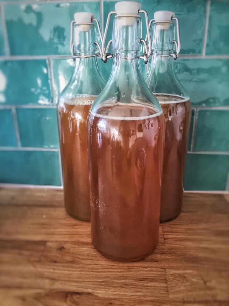 Kombucha Tea in a bottle