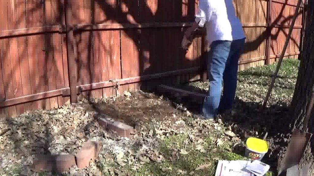 planting area for morel mushrooms