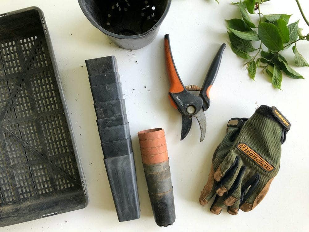 Growing Zucchini Tools